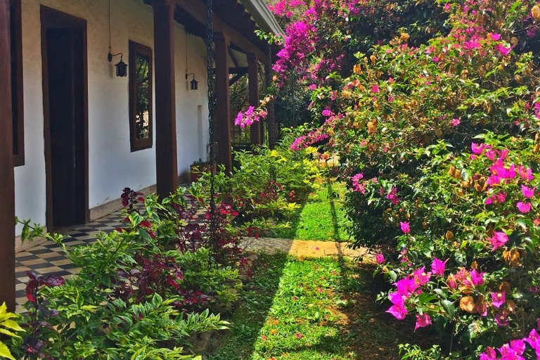 Blick in den Garten, Hotel Jérico