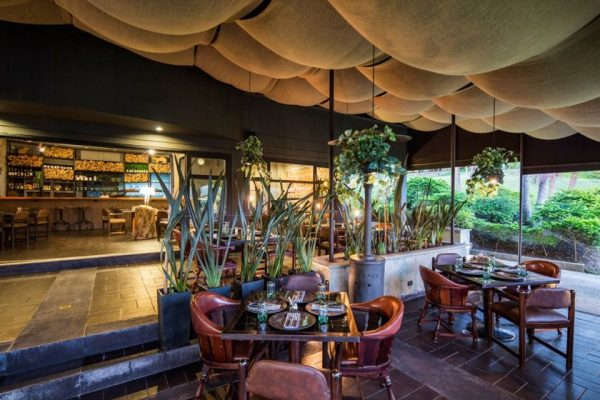 Hotel Movich Las Lomas - Restaurants and Bars 3