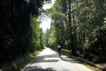 Colombia Road Cycling Training Camp: Training on the same routes as the Colombian pros