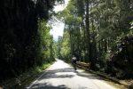 Rennradcamp Kolumbien: Trainieren auf den gleichen Straßen wie die kolumbianischen Profis