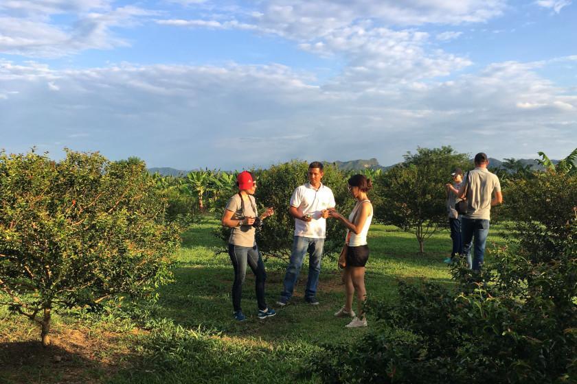 Gäste von Elite Cycling Colombia auf der Radreise Alto de Letras bei der Früchte-Tour in Mariquita, Kolumbien
