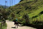 Rennradreise Faszinierendes Kolumbien: Berglandschaft mit Wachspalmen, dem Nationalbaum Kolumbiens