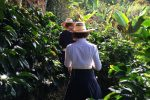 Rennradreise Faszinierendes Kolumbien: Einmal selber Kaffee pflücken