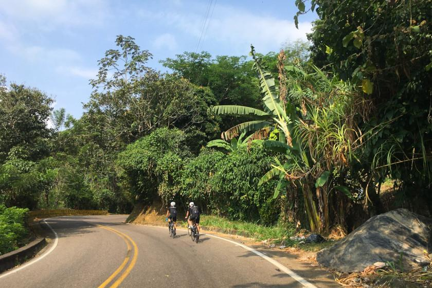 """Rennradreise """"Ruta del Café"""": Tropische Vegetation und herrliches Klima"""